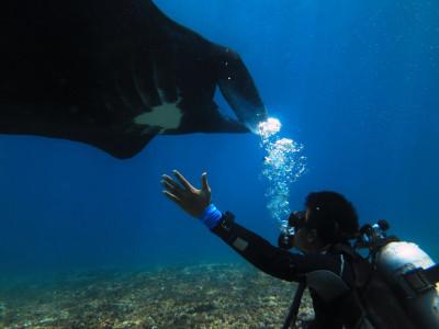 Beraksi Dengan Konservasi Ikan