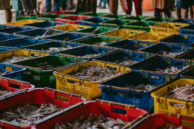 Gudang Lelang Dagang Ikan